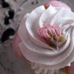 """パティスリー ユウ ササゲ『サントノーレ""""桜""""』『いちごのショートケーキ』『プランセス』『ドゥー フロマージュ』"""